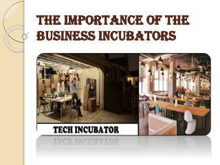 What Does a Tech Incubator do?