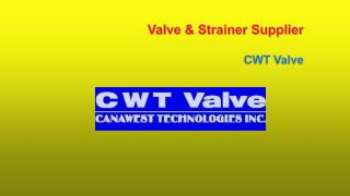 Valves and Strainers