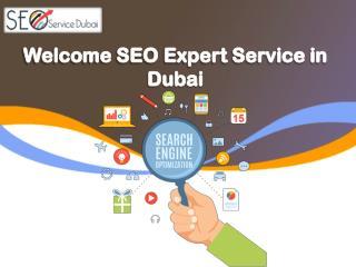 SEO Service in Dubai