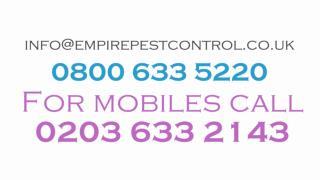 Empire Pest Control Services
