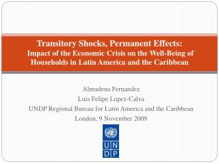 Transitory Shocks, Permanent Effects:  Impact of the Economic Crisis on the Well-Being of Households in Latin America an