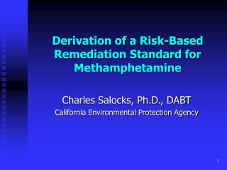 Derivation of a Risk-Based Remediation Standard for Methamphetamine