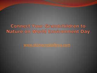Connect Your Grandchildren to Nature on World Environment Day