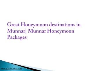 Best Honeymoon Destinations in Munnar| Munnar Honeymoon Packages