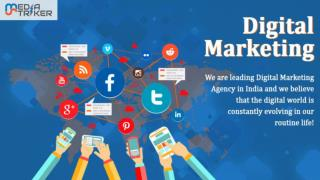 Media Striker - Digital Marketing Company In Noida with Our Professional TEAM!