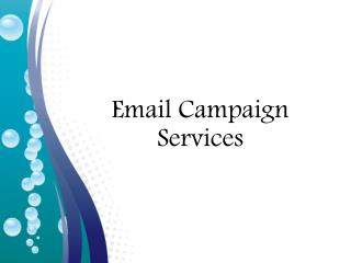 Email Campaign Services | Leo Data Services