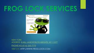 frog lock services