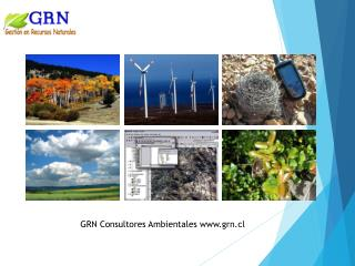 GRN Consultores Ambientales www.grn.cl