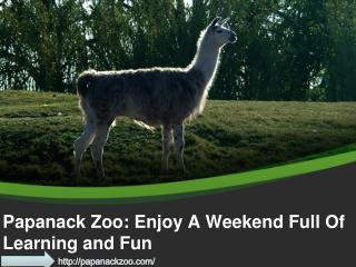 Papanack Zoo: Enjoy A Weekend Full Of Learning and Fun