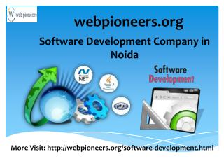 Custom Software Development Companies in Noida