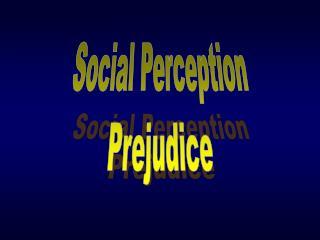 Social Perception Prejudice