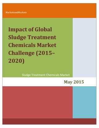 Impact of Global Sludge Treatment Chemicals Market