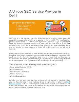 A Unique SEO Service Provider in Delhi