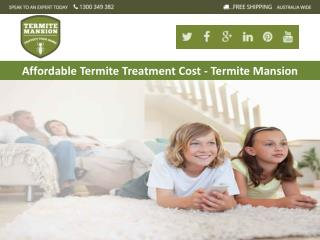 Affordable Termite Treatment Cost - Termite Mansion