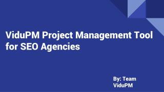 Project Management Tool for SEO Agencies