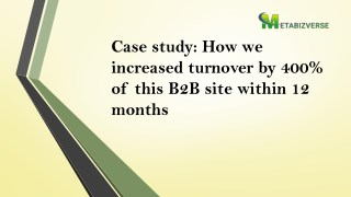 Case study: How we increased turnover by 400% of this B2B site within 12 months