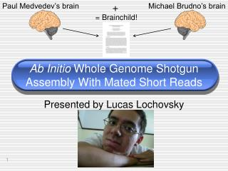 Ab Initio Whole Genome Shotgun Assembly With Mated Short Reads
