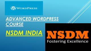 advanced wordpress course in pune city by NSDM India