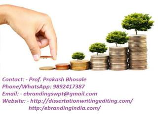 eBranding India Provides the Best Project Finance Funding Consultation Services In Pune