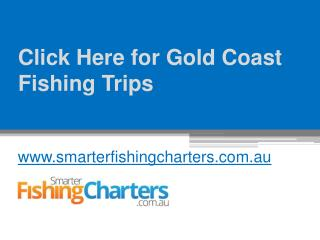 Click Here for Gold Coast Fishing Trips - www.smarterfishingcharters.com.au