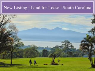 New Listing   Land for Lease   South Carolina