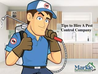 Tips to Choose A Pest Control Company