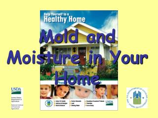 Mold and Moisture in Your Home
