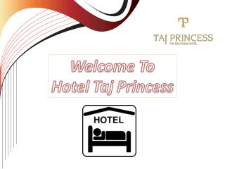 Taj Princess: Good Hotels in Karol Bagh New Delhi