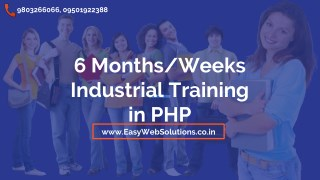 6 Months / Weeks Industrial Training - PHP Training Institute