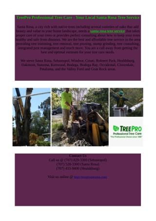 santa rosa tree service