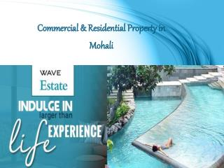 Commercial & Residential Property in Mohali