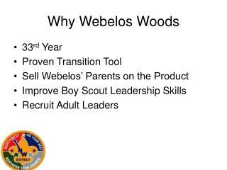Why Webelos Woods