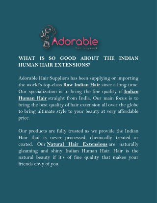 WHAT IS SO GOOD ABOUT THE INDIAN HUMAN HAIR EXTENSIONS?