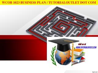 WCOB 1023 BUSINESS PLAN / TUTORIALOUTLET DOT COM