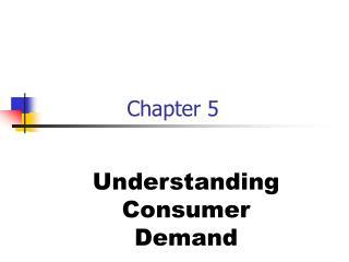 Understanding Consumer Demand