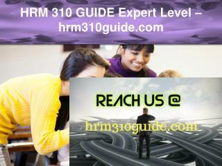 HRM 310 GUIDE Expert Level –hrm310guide.com
