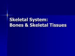 Skeletal System: Bones  Skeletal Tissues