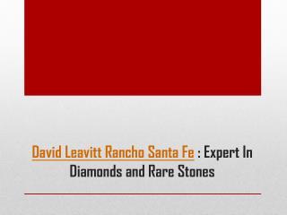 David Leavitt Rancho Santa Fe - Expert In Diamonds and Rare Stones
