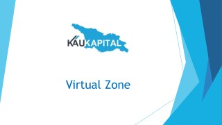 Virtual zone for IT business setup in Georgia