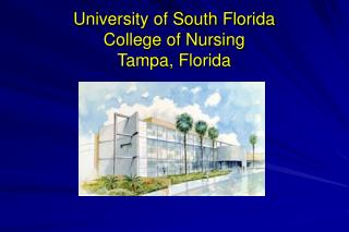 University of South Florida College of Nursing Tampa, Florida