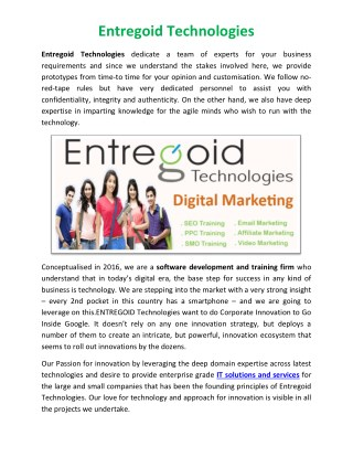 Entregoid Technologies Digital Marketing Nagpur