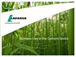 Biomass Use in the Cement Sector