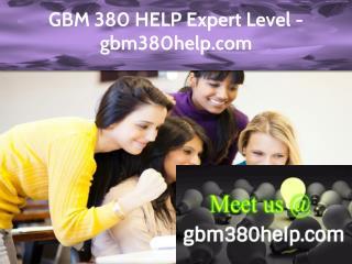 GBM 380 HELP Expert Level - gbm380help.com