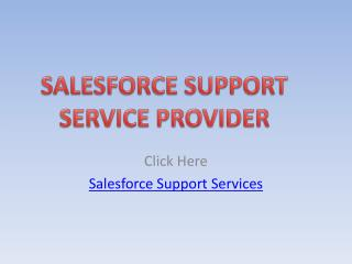 Janbask as a Salesforce Support  Service Provider