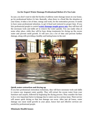 Water Damage Maple Grove MN