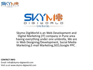 Top SEO company in pune|Skymo digiworld