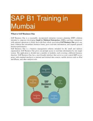 SAP B1 Training in Mumbai