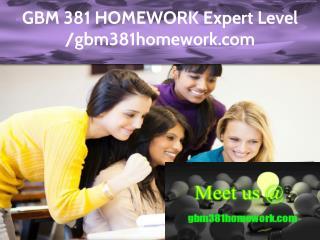 GBM 381 HOMEWORK Expert Level – gbm381homework.com