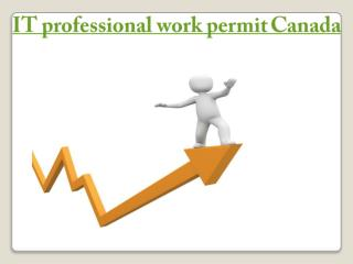 IT professional work permit canada