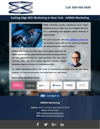 Cutting Edge SEO Marketing in New York - AMMA Marketing
